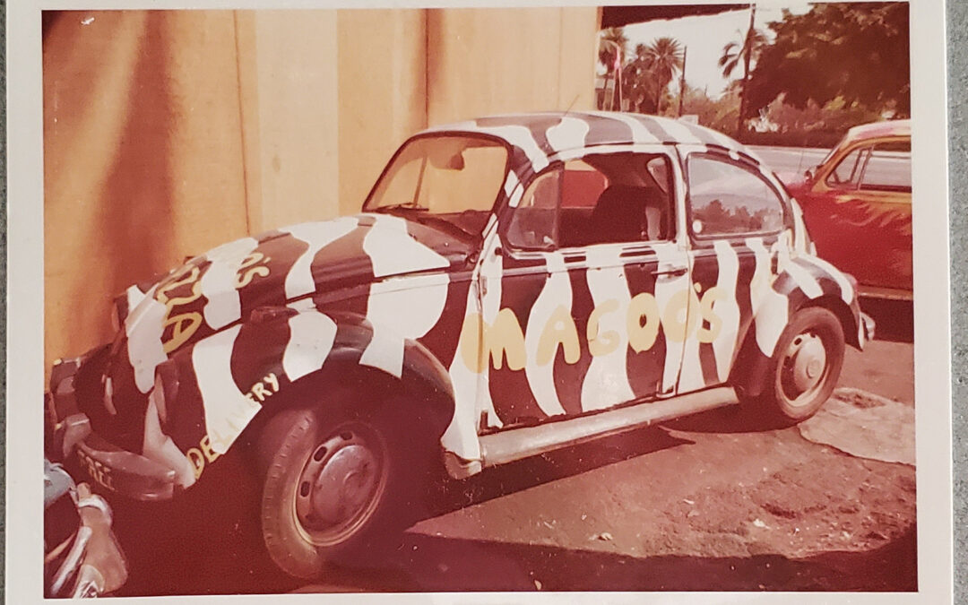 The Magoo's VW Delivery Bug